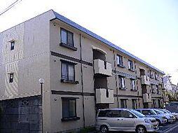 埼玉県さいたま市中央区新中里4丁目の賃貸アパートの外観