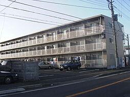 茨城県水戸市笠原町の賃貸マンションの外観