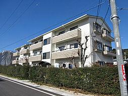 滋賀県大津市石山寺4丁目の賃貸マンションの外観