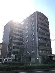 ラフィーネ住之江[6階]の外観