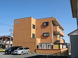 埼玉県行田市長野4丁目の賃貸マンションの外観