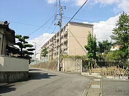 静岡県三島市旭ヶ丘の賃貸アパートの外観