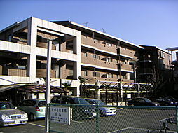 アルカディア・1[401号室]の外観