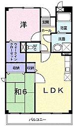 香川県高松市上天神町の賃貸マンションの間取り