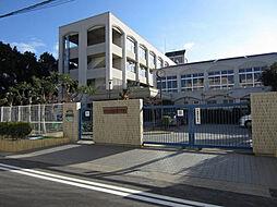 名村木村ビル[3階]の外観