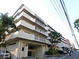 平井駅 16.9万円