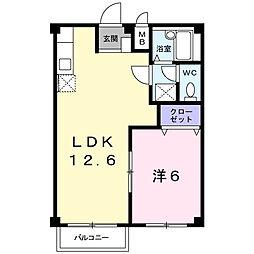 デパートメントアラキ[203号室]の間取り