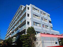 埼玉県朝霞市溝沼3丁目の賃貸マンションの外観