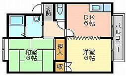 岡山県岡山市南区下中野の賃貸アパートの間取り