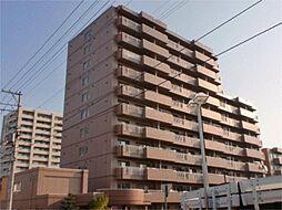 シティオ福住[7階]の外観