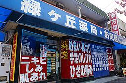 [テラスハウス] 兵庫県伊丹市鴻池5丁目 の賃貸【/】の外観