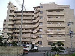 チサンマンション紀ノ川704号[7階]の外観
