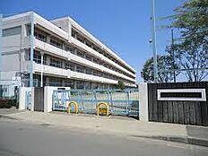 町田市立金井中学校(1216m)