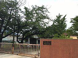 平坂保育園 約910m