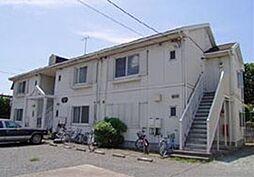 ハイネス山崎[B203号室]の外観