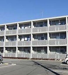 栃木県宇都宮市江曽島3丁目の賃貸マンションの外観