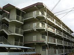 河内花園徒歩5分 西岩崎コーポ[305号室]の外観