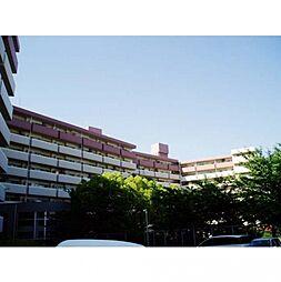 ロワールマンションアール板付[5階]の外観