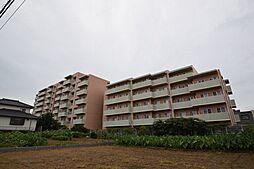 グローバルガーデンシティA棟[307号室]の外観