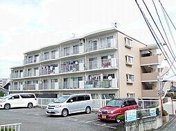 東京都多摩市豊ヶ丘1丁目の賃貸マンションの外観