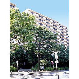 パークシティ本牧B棟[7階]の外観