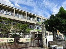 小学校小野市立市場小学校まで2341m