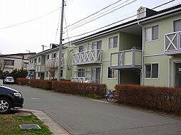 グリーンビレッジ天昌寺C棟[202号室]の外観
