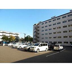 北海道札幌市東区北四十一条東4丁目の賃貸マンションの外観