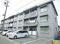 静岡県浜松市東区篠ケ瀬町の賃貸マンションの外観