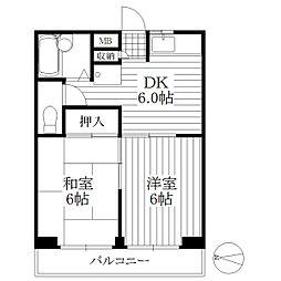 東京都板橋区前野町4丁目の賃貸マンションの間取り