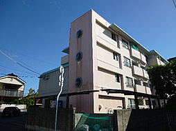 愛媛県松山市中村4丁目の賃貸マンションの外観