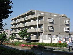 メルグリーン中川[305号室号室]の外観
