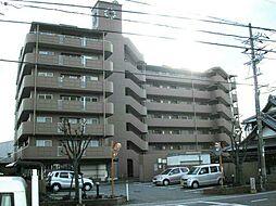 和歌山県岩出市堀口の賃貸マンションの外観