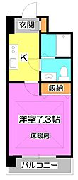 埼玉県富士見市西みずほ台2-の賃貸マンションの間取り
