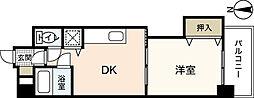 広島県広島市西区観音本町2丁目の賃貸マンションの間取り
