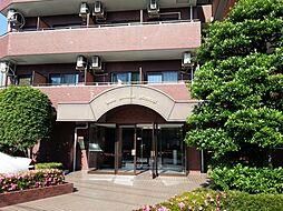 ライオンズマンション前橋 113号 分譲[113号室号室]の外観