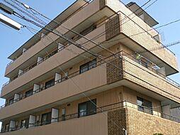 パインハイム3[3階]の外観