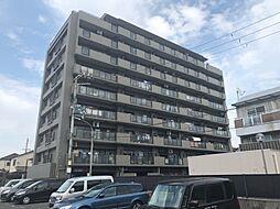 アステージ泉大津[7階]の外観