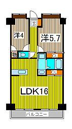 新田第11ビル[11階]の間取り