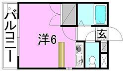 コーポ愛光[201 号室号室]の間取り