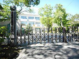岡崎市立常磐南小学校(1192m)