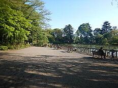 善福寺公園まで約220m
