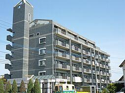 クロスロード[5階]の外観