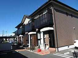 [テラスハウス] 茨城県水戸市大塚町 の賃貸【/】の外観
