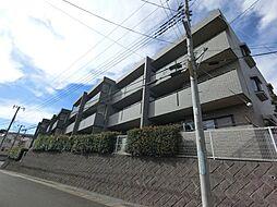 千葉県佐倉市西志津4丁目の賃貸マンションの外観