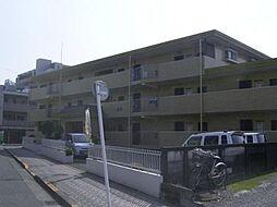 カターラ梶[2階]の外観