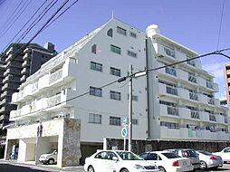 白壁ハイツ[2階]の外観