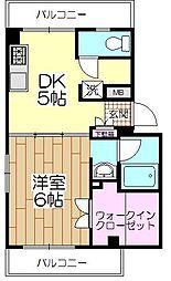 東京都葛飾区細田5丁目の賃貸マンションの間取り