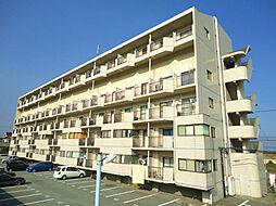 サンシティ小石[2階]の外観