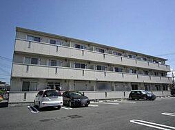 BAY HOUSE[3階]の外観